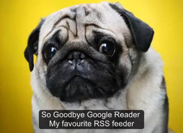 google_reader_animals