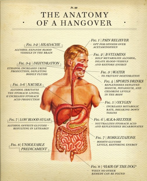 hangover-cure-505x620