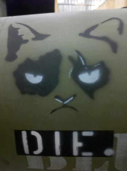small_the grumpy cat bomb2
