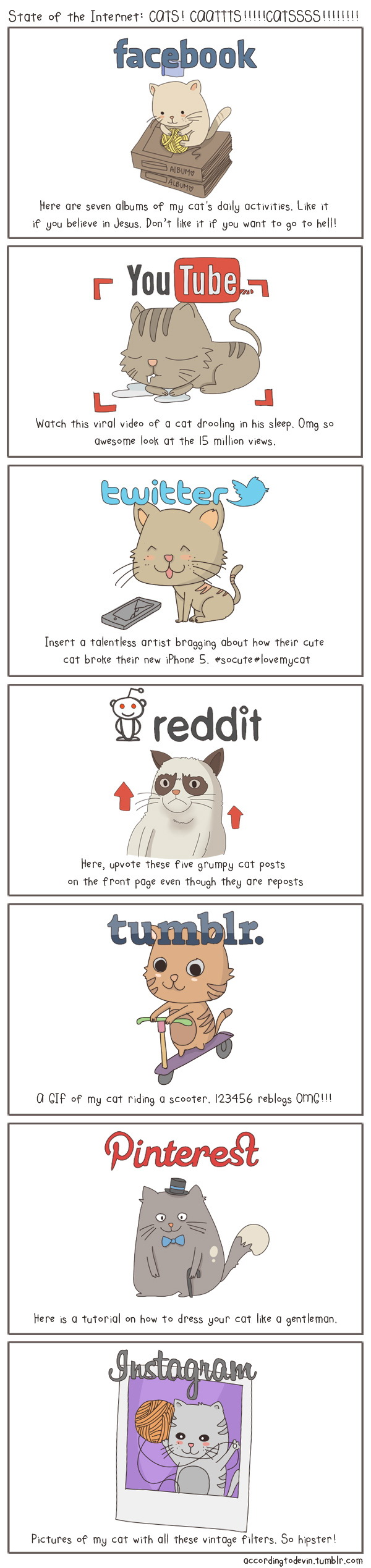 the_state_of_the_internet_with_cats