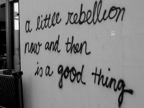 a_little_rebellion