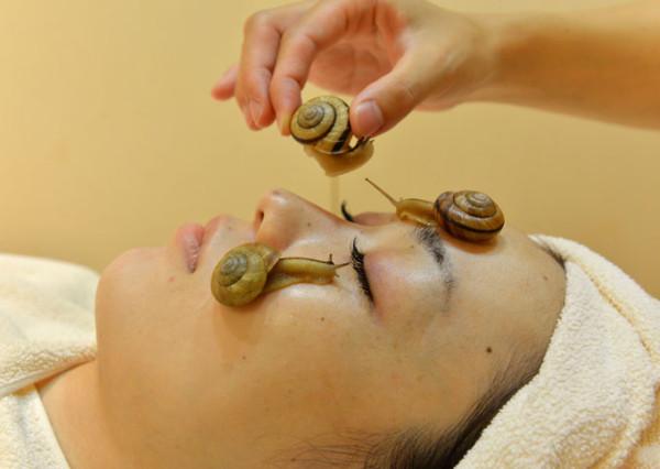 Snail-facial-treatments