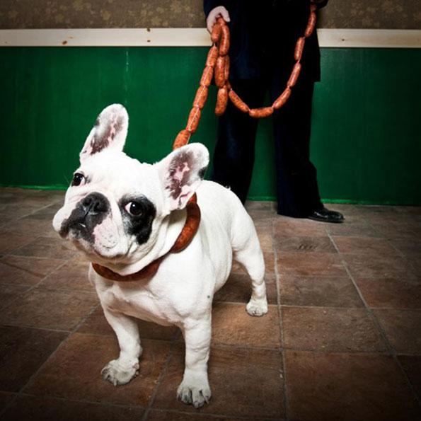 sausage-link-dog-leash-1
