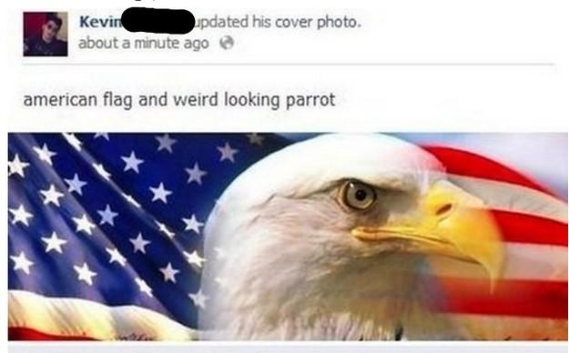 weird-parrot_small