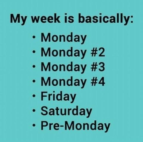 My-week...