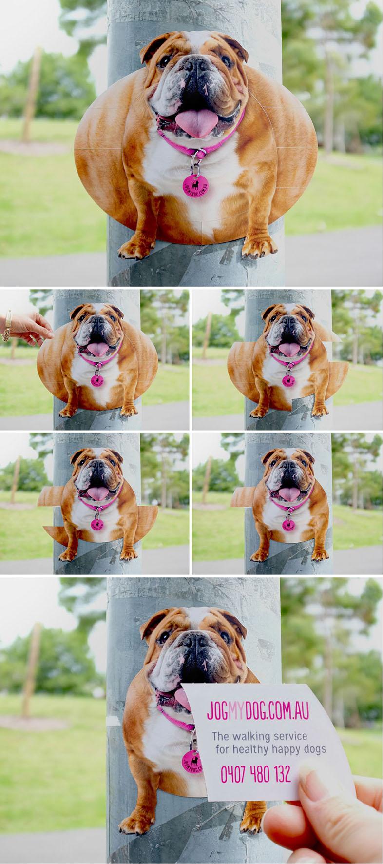 Jogmydog-Dog-Walking