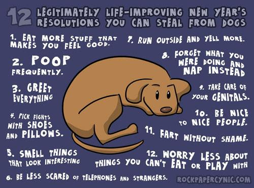 ny-resolutions-from-your-dog