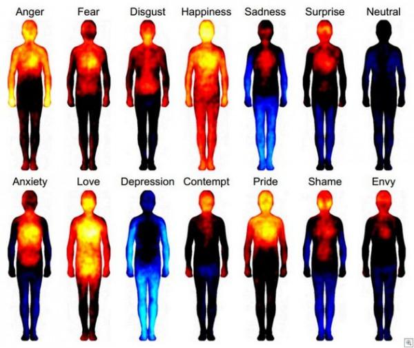 body-heat-map_thumb