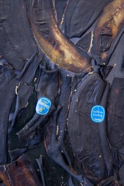 darth-vader-blackened-bananas-3