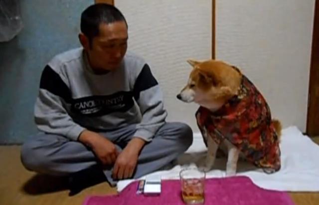 hund_alkohol
