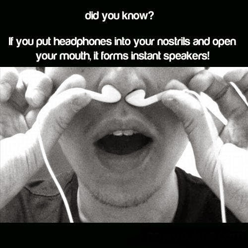 did-you-know-headphones