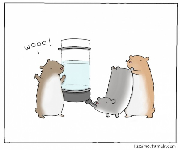 small_hamster_party