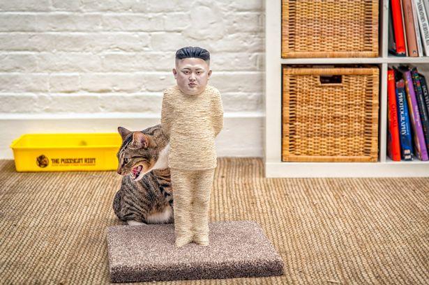 The-Pussycat-Riot (1)