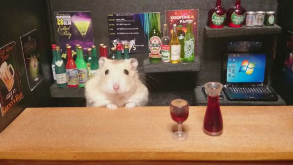 hamster-bartenders-1