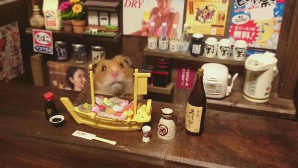 hamster-bartenders-5