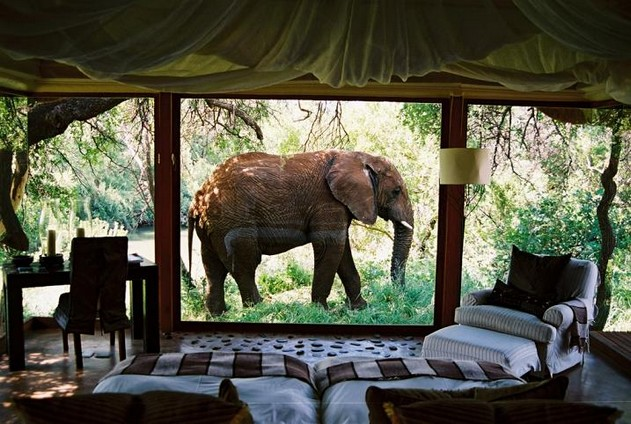 A-room-with-a-good-view_small