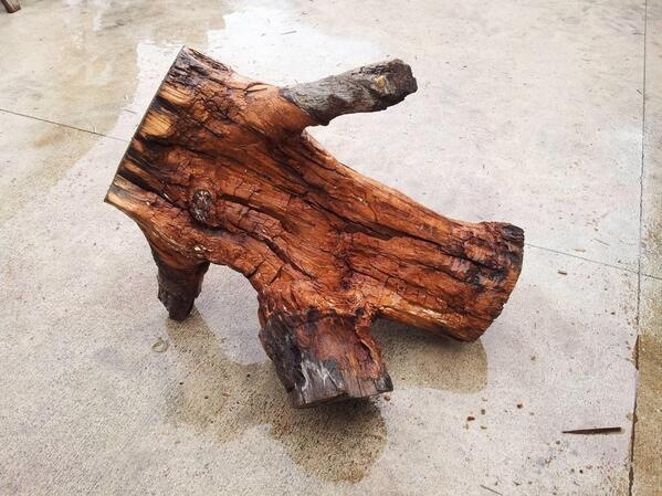 just-a-log-breakdancing