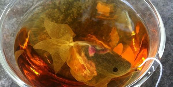 CharmVilla-Goldfish1-990x500