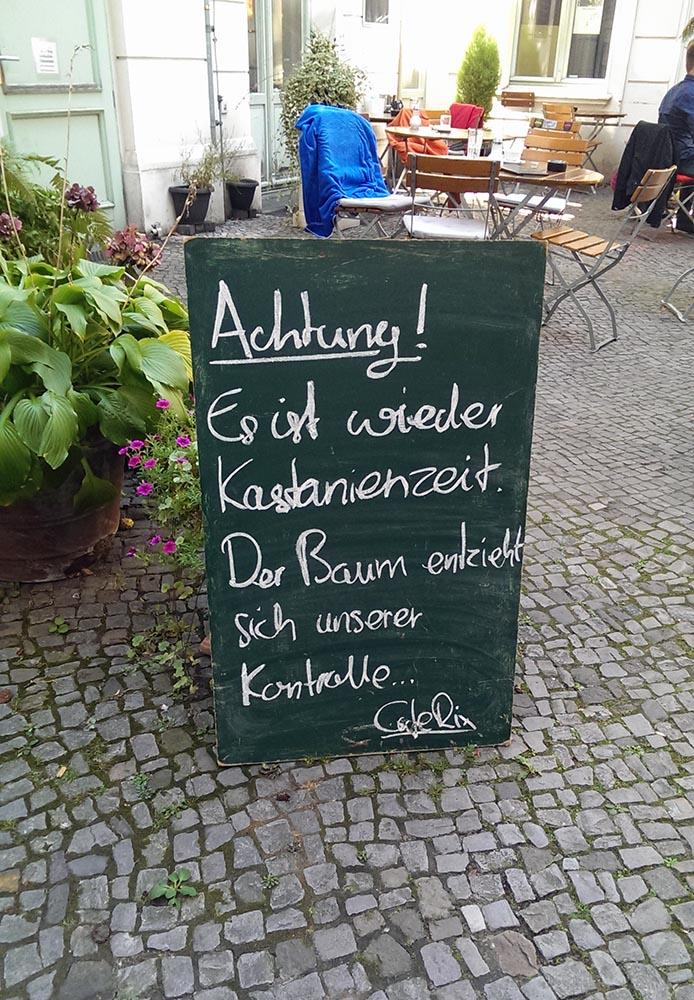Kastanienzeit-Berlin-Achtung-vor-Kastanien-fallen-vom-Baum
