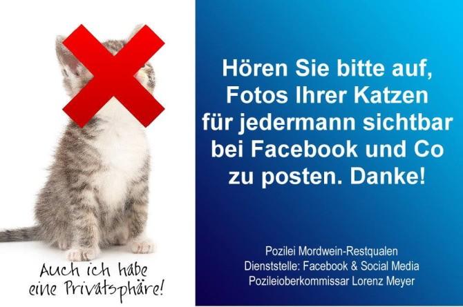 katzen-facebook-670x445