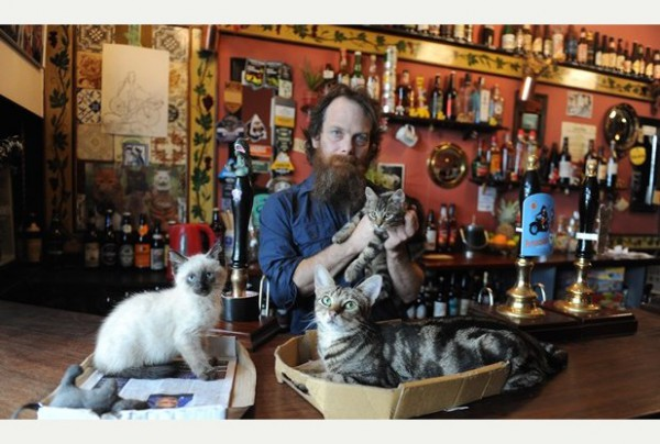 Luke Daniels the landlord of Bag O' Nails Pub in Bristol, with one of its many cats, it is famous for being full of cats. It is also one of the only free houses left in the city. Date: 10/11/2015 Photographer: Simon Galloway/Staff. Copyright: Local World