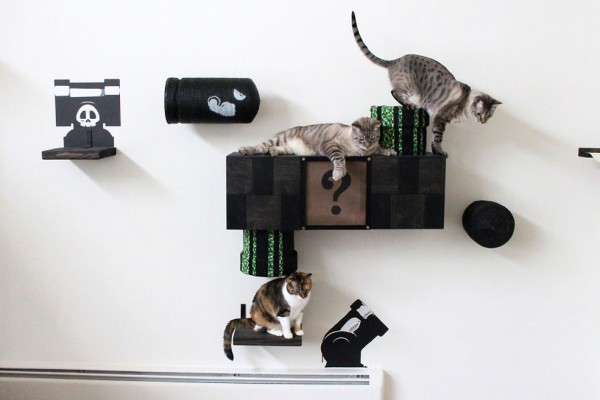 super-mario-cat-play-area