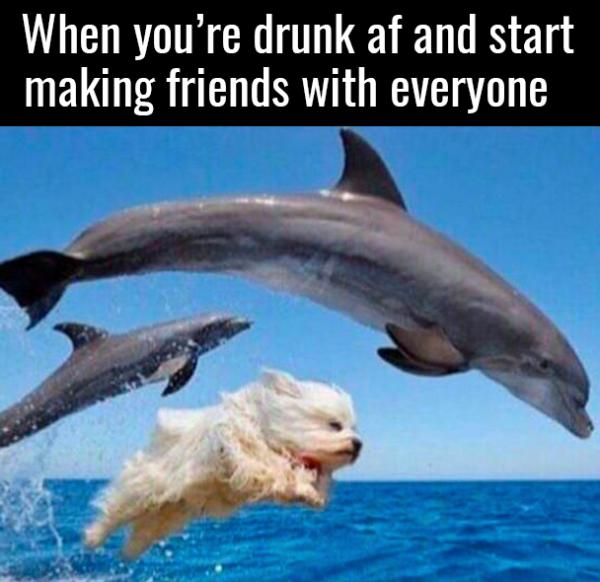 drunk-friends
