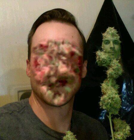 faceswap-weed