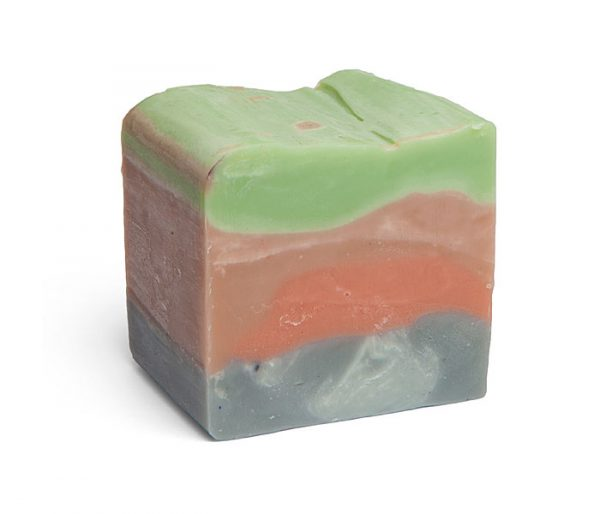 archaeology-soap-dinosaurs-outlaw-soaps-2