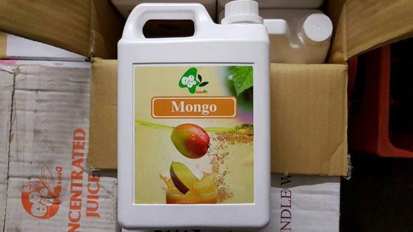 mongo-saft